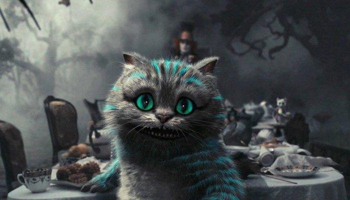 cat-alice